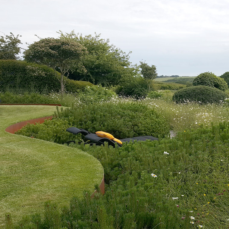 Fairlight End: A Natural and Contemporary Garden in a Sloping Landscape